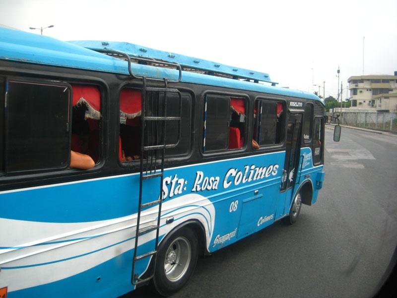 Buskooperative Rosa Colimes